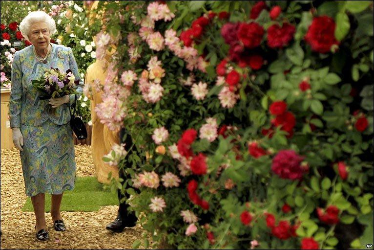 выставка цветов в челси в фото